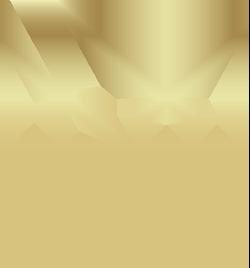 SG_GULL_MORKBAKGRUNN-250px
